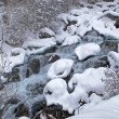 Winter mountain creek during snowfall — Stock Photo #2689046