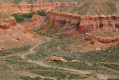 Canyon Temirlik, Kazakhstan — Stock Photo