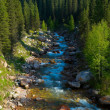 Mountain river — Stock Photo #2692297