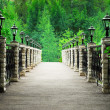 Stock Photo: Footbridge in park