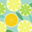 Citrus fruit background vector — Stockvektor