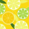 Citrus fruit background vector — Stok Vektör