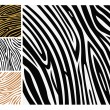 Animal background pattern - zebra skin p — Stock Vector
