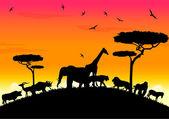 Safari africa sunset at high hill — Stock Vector
