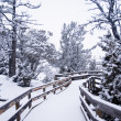 Morning Snow on Wooden Boardwalk 3 — Stock Photo