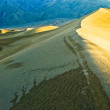 Golden Sand Dune — Stock Photo