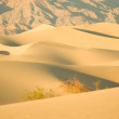 Desert Dunes at Sunset — Stock Photo