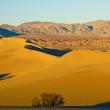 Desert Solitude 3 — Stock Photo #2627664