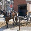Amish horse and buggy — Stock Photo #2641488