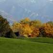 Trees in a Park with Mountains — Stock Photo