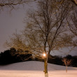 Light Post, Snowy Hill, Trees — Stock Photo