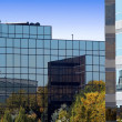 Stock Photo: Mirrored Business Buildings