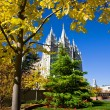 Mormon Temple Square — Stock Photo