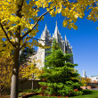 Royalty-Free Stock Photo: Mormon Temple Square