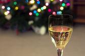 Celebrating the Holidays — Stock Photo