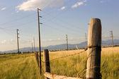 Alan arka plan mavi çit — Stok fotoğraf