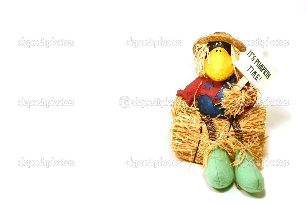 Halloween Decoration - Crow — Stock Photo #2600609