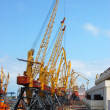 Stock Photo: Several massive cranes in harbour