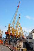 Several massive cranes in the harbour — Stock Photo