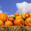 Pumpkins on bales of straw (hay) - Stock Photo