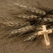 Stock Photo: Christian Cross And Wheat