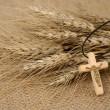 Christian Cross And Wheat — Stock Photo
