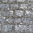 Wall, old bricks — Stock Photo #2599979
