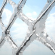 Stock Photo: Frozen net