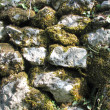 Stones with a green moss - Stock Photo