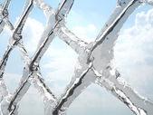 Frozen net — Stock Photo