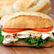 Fresh and delicious sub sandwich. — Stock Photo #2560453