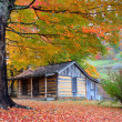 Beautiful Rustic Log Cabin in Fall — Stock Photo