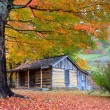 Beautiful Rustic Log Cabin in Fall - Stock Photo