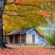 Beautiful Rustic Log Cabin in Fall — Stock Photo