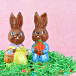 Stock Photo: Mr. and Mrs. Easter Bunny