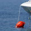 Red buoy in the blue sea — Stock Photo