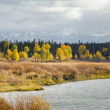 Stock Photo: Grand Teton Autumn