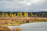 Grand Teton Autumn — Stock Photo