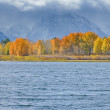Oxbow Bend in Fall — Stock Photo