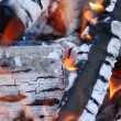 Fire in fireplace — Stock Photo #2644177