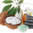 Coconut,salt and stones - Stockfoto