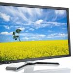 Black monitor white — Stock Photo #2646345