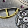 Watch gears close up — Stock Photo #2648098