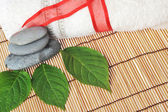 White towel and green leaves — Stock Photo