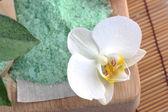 Green sea salt — Stock Photo