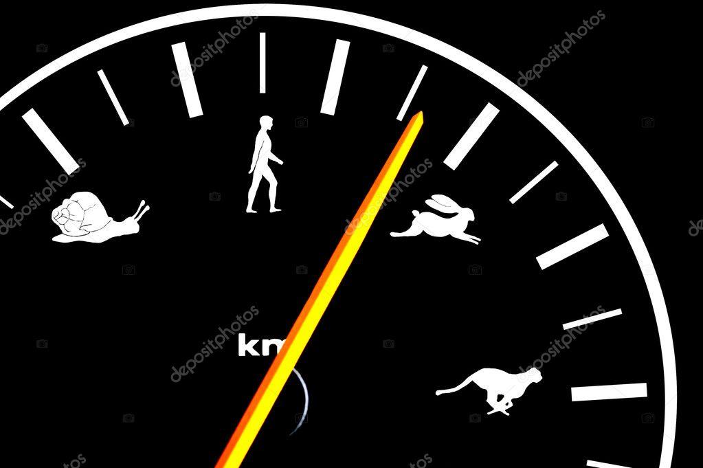 Car speedometer shows speed