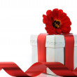 Present with red ribbon and flower — Stock Photo #2653166