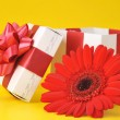 Gift box and red flower — Stock Photo #2653202
