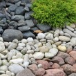Stock Photo: Backyard decorated with stones