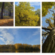 Beautiful autumn pictures — Stock Photo